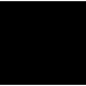 logo O