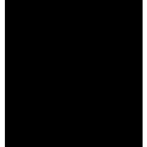 logo X